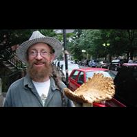 Ben's Mushrooms