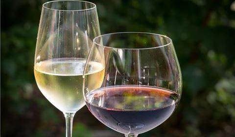 Wine Wednesdays - TAMO Bistro + Bar